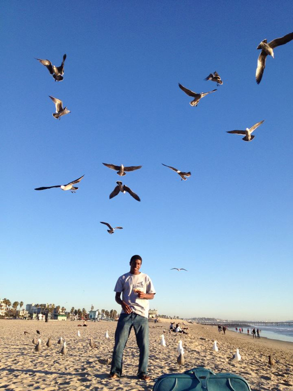 Rafel Against the Killer Seagulls