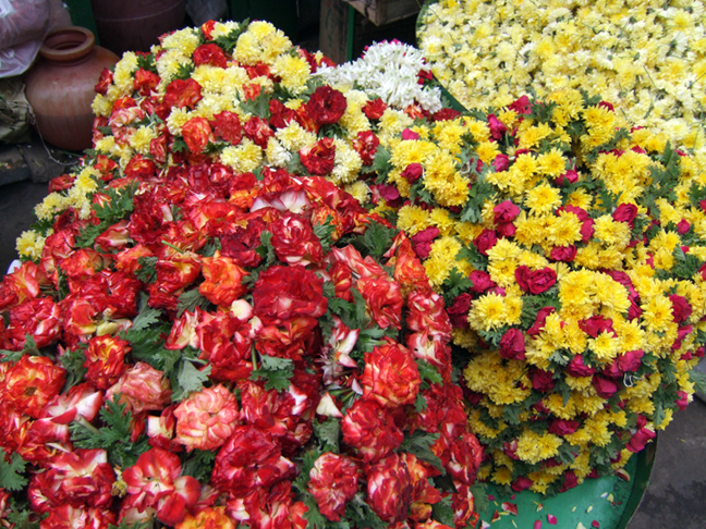 Flowers in Bangalore  © 2006 by Lili Bernard