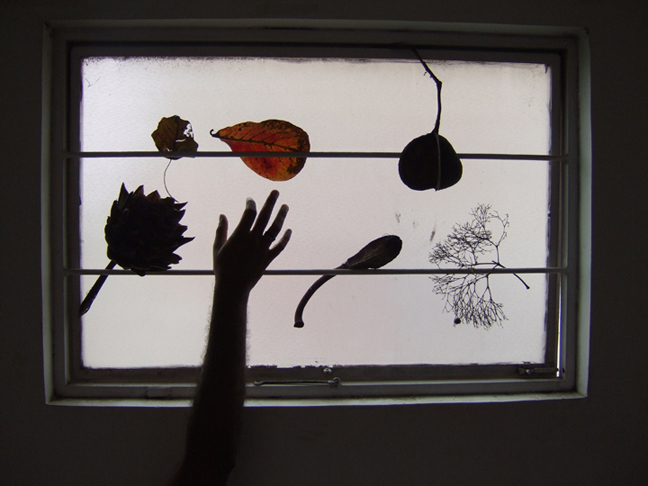 Suresh Jayaram's Hand on his Window © 2006 by Lili Bernard
