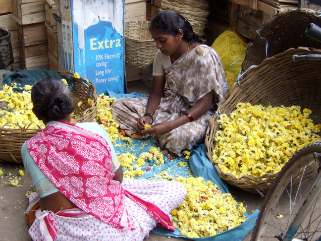 Selling Flowers in Bangalore © 2006 by Lili Bernard