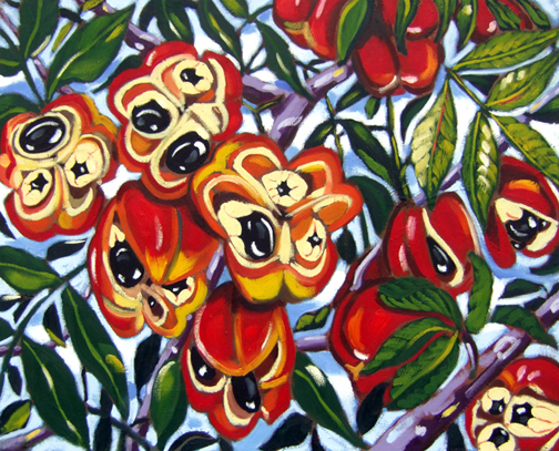 "Ackee Fruit, Oil on Canvas, 24""x30"" © 2006 Lili Bernard, Available for Purchase"
