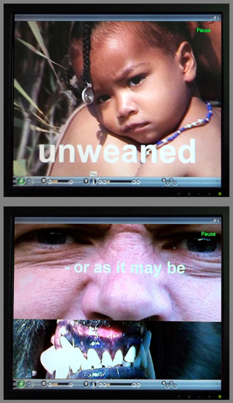 He Killed Unweaned Babies © 2011 by Lili Bernard