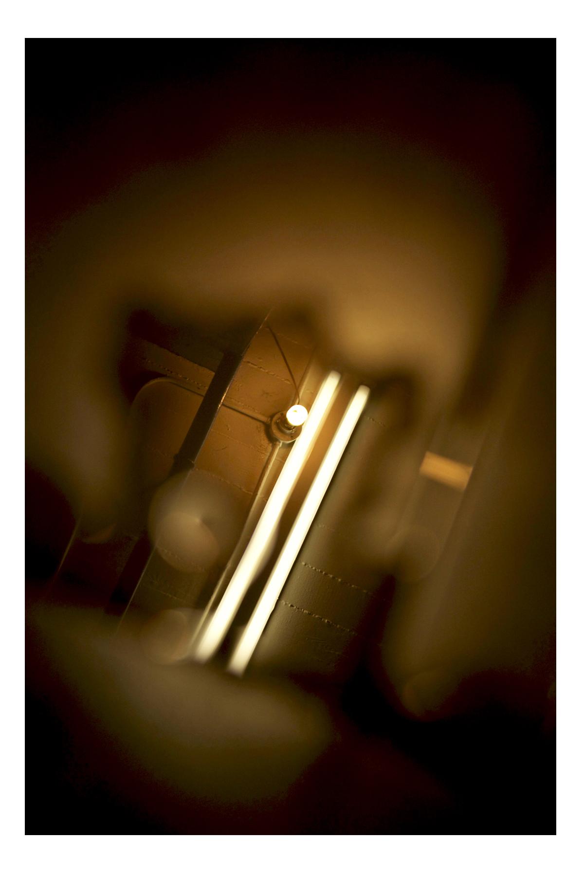 "Janet E. Dandridge. Iono,  2013. Photography, 60""x72"""